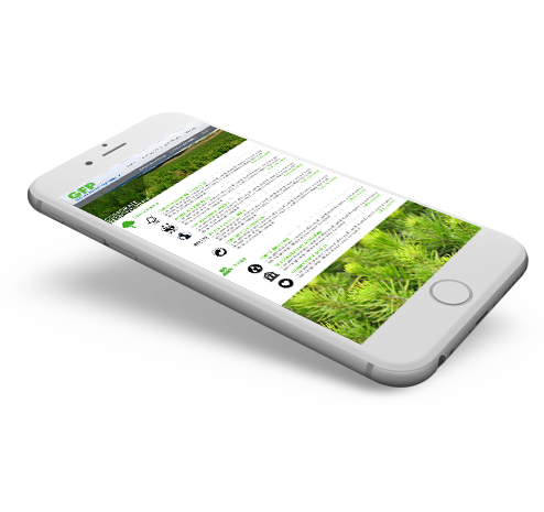GFP Mobile Website Design