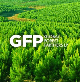 GFP Branding & Web Design
