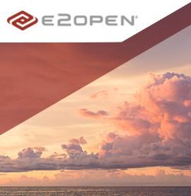 E2open Branding & Logo Design