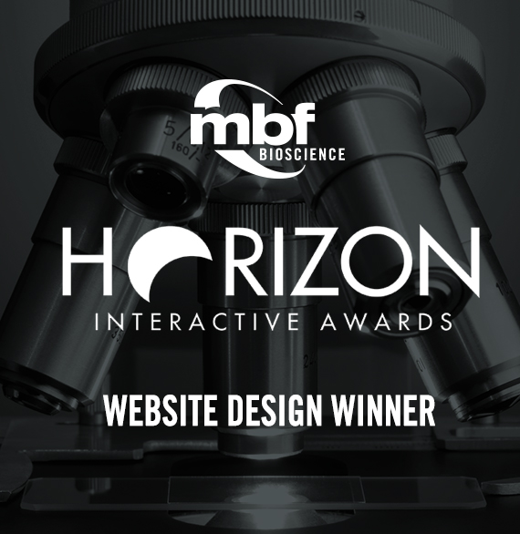 MBF Bioscience Website Design Award